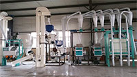 Uganda 30Ton Cornmeal Grinding Machine