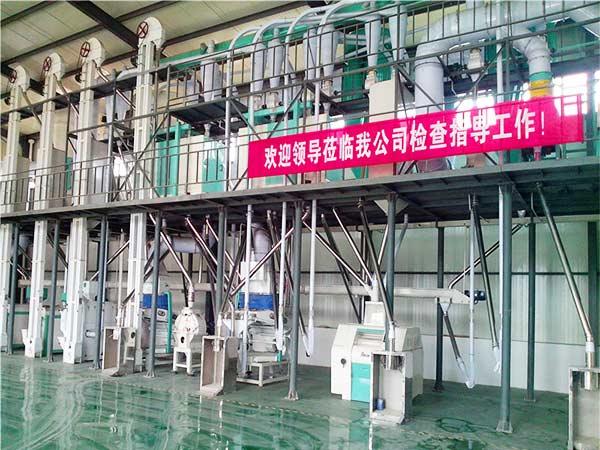 60TPD Corn Flour & Grits Production Line