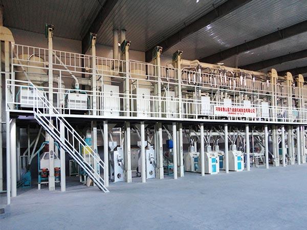 150T Corn Flour Milling Plant Maize Flour Mill with Dry Method