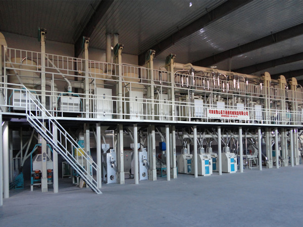 Corn Grits and Flour Production Line with Dry Method