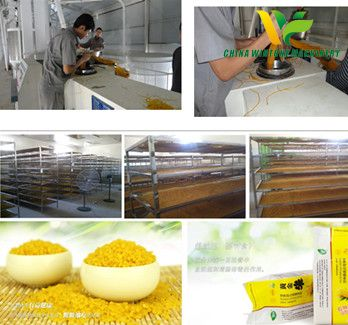 corn artificial rice production line.jpg