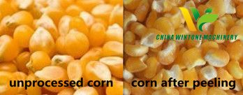 corn cleaning and peeling plant.jpg