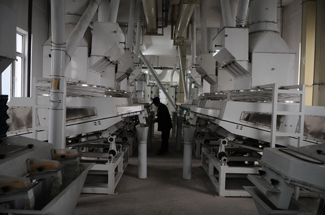 corn germ extraction line.jpg