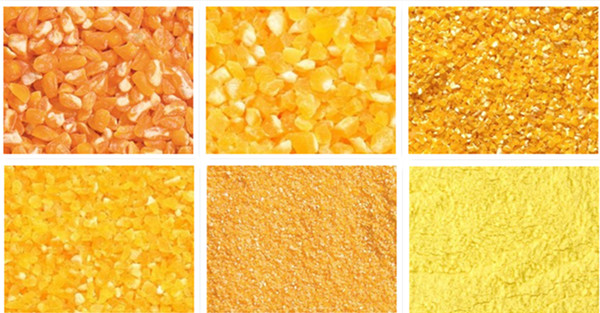 corn grits and flour production line.jpg