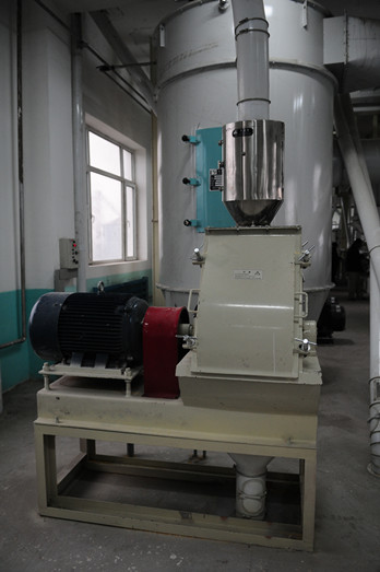 Maize milling plant or corn flour milling plant grits making