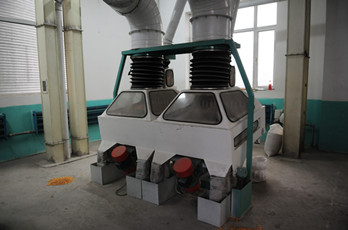 Maize milling plant or corn flour milling plant destoner