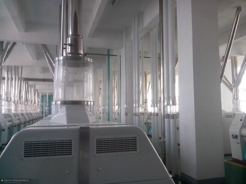 Maize milling plant or corn flour milling plant