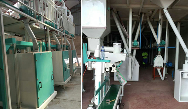 50TPD Corn Grinding Mill Maize Grinding Mill