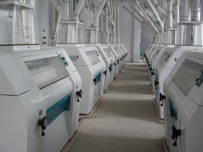 200T Corn Flour Processing Plant