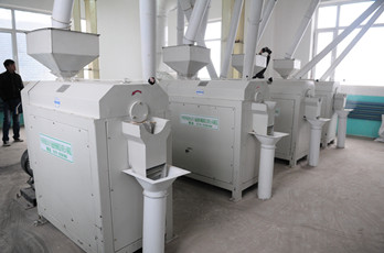 Maize milling plant or corn flour milling plant corn peeling